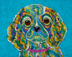 Brown Eyed Girl - Cavalier King Charles