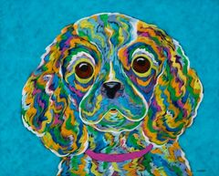 "Brown Eyed Girl - Cavalier Metal Print SIZE 11"" x 14"""