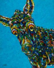 Jack... - Miniature Donkey