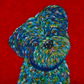Forever Yours - Shih Tzu