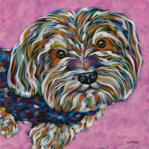 "Little Princess - Yorkie METAL PRINT Size 12"" x 12"""