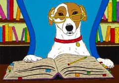 How To Train Your Owner In 7 Days - Jack Russell