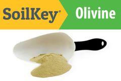 Olivine - 10lbs rock dust