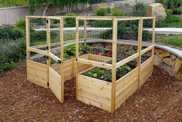 OLT Walk-in 8'x8' Cedar Raised Bed Garden with Deer Fencing