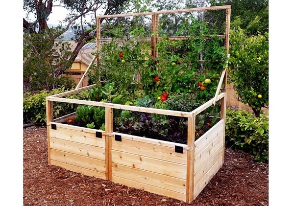 OLT Cedar Raised Garden Bed Kit with Lid/Trellis 3' x 6'