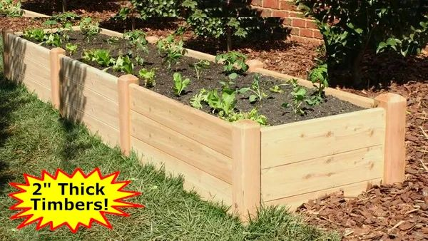 "2'x12'x16"" high Cedar Raised Garden Bed by Marleywood"