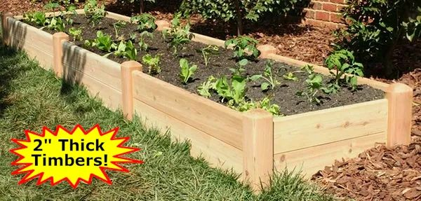 "2'x12'x11"" high Cedar Raised Garden Bed by Marleywood"