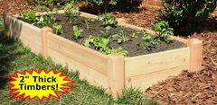 "2'x8'x11"" high Cedar Raised Garden Bed by Marleywood"
