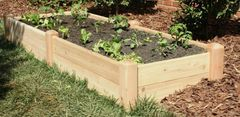 "2'x8' - 11"" high Cedar Raised Garden Bed by Marleywood"