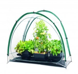 Culti Cave® Mini Greenhouse
