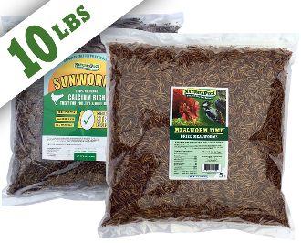 Worm Combo - (5 lbs Mealworms + 5 lbs Sunworms)