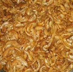 Gammarus Shrimp -NaturesPeck® - 5 LBS