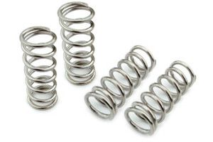 Carvestik Replacement Springs