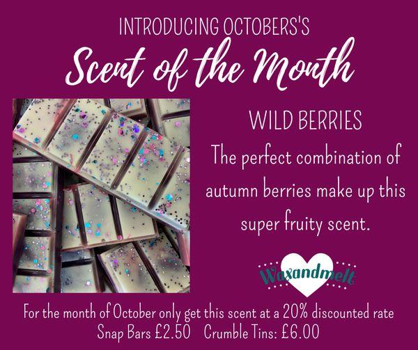 OCTOBER SCENT OF THE MONTH - WILD BERRIES