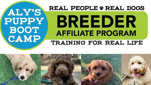 Aly's Puppy Boot Camp Badge