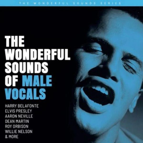 WONDERFUL SOUNDS OF MALE VOCALS 200G 2LP