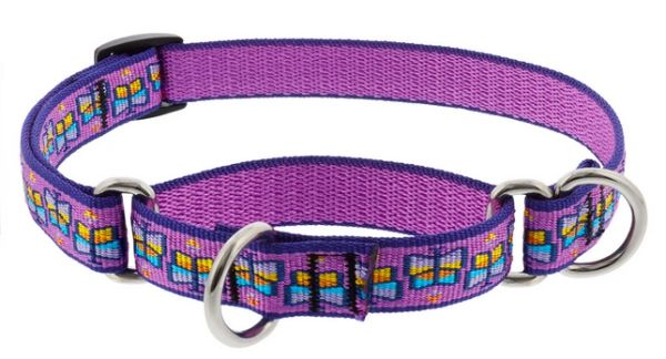Lupine Martingale Collars - Limited Edition Patterns