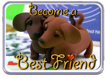 The Best Friend Program
