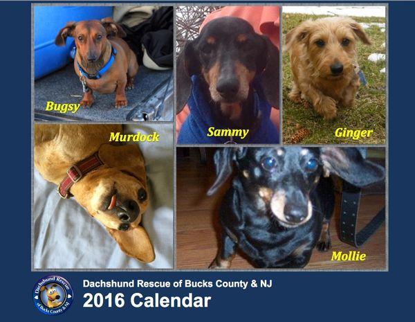 2016 DRBC Calendar