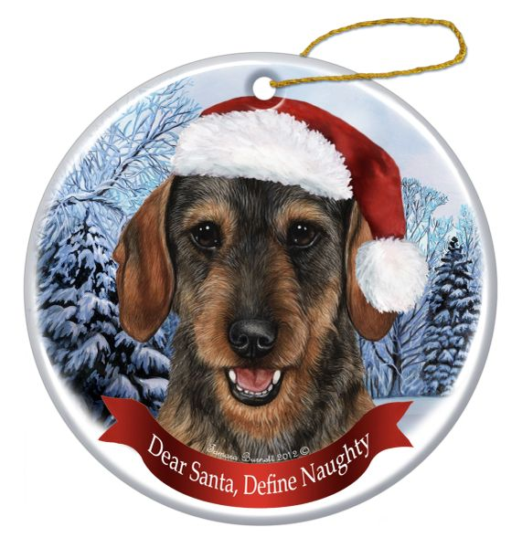 Holiday Ornament - Define Naughty