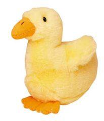 Talking Mr Ducky