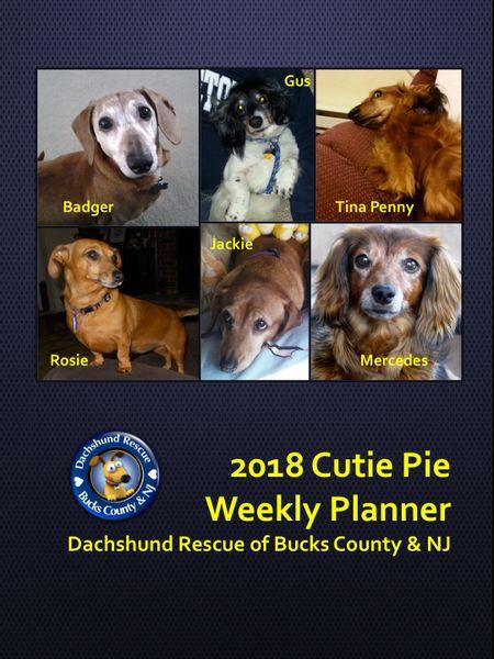 2018 DRBC Weekly Planner