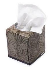Tissue (1 box)