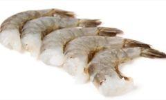 Shrimp - Jumbo/uncooked - 1lb.