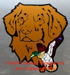 Nova Scotia Duck Tolling Retriever Headstudy With Mallard Duck Large Magnet