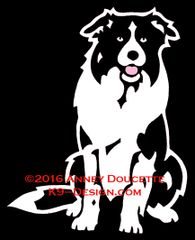 Border Collie Sitting Decal - Choose Drop or Prick Ears