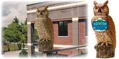 Dalen Rotating Head Owl