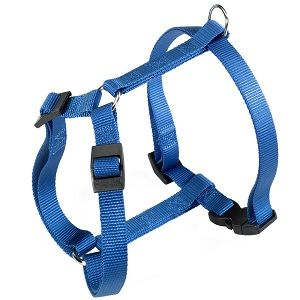 CHAMPION HARNESS