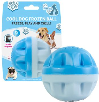 COOL DOG FROZEN TOYS