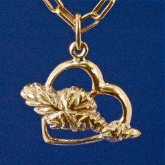 My heart belongs to Catalina Pendant ion 14K Gold