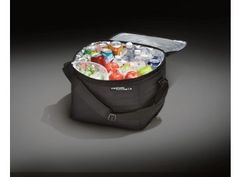 Cargo Organizer - Soft-Sided Cooler Bag W/Adjustable Carrying Strap/ AE5Z-19H484-A
