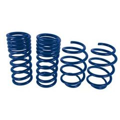 2015 MUSTANG GT COUPE TRACK LOWERING SPRINGS/ M-5300-Y
