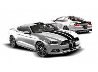 Graphics Kit - Custom Stripe Kit, Over -the-Top, Dual Stripe, Gloss White/ VFR3Z-6320000-K