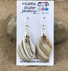 Tan Swirl Clam Shell Earrings - CESH9