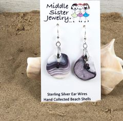 Quahog Beach Shell Earrings - CESH13