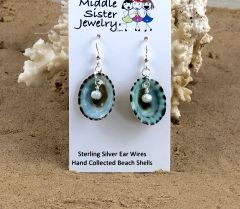 Limpet Beach Shell Pearl Earrings - CESH2
