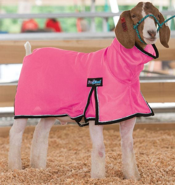 ProCool Goat Blanket - Hot Pink or White