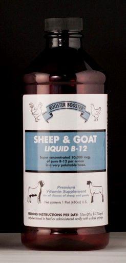 Sheep & Goat Vitamin B-12