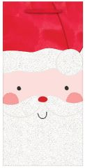 Jolly Santa Gift Bag