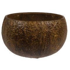 Authentic Coconut Cup 18oz