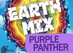 Earth Mix Purple Panther