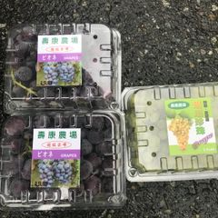 Socome Table grapes Two boxes 寿康超级巨峰葡萄2.5磅两盒