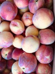 pro_Local Organic Bulk Peaches 20 lbs box
