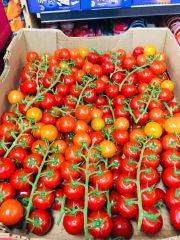 Veg_Local Cherry Tomatoes on the Vine 11lbs Box 【畅销品】本地带枝樱桃西红柿11磅箱