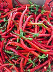 Veg.o_Local Organic Red/green chilli Pepper 10 lb 本地慈心有机种植小辣椒10磅箱