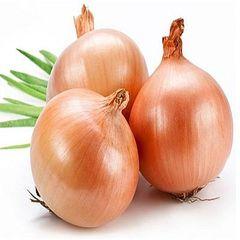 Veg.or_Organic Onion 有机洋葱3磅袋